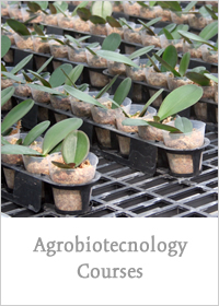Agrobiotechnology Courses
